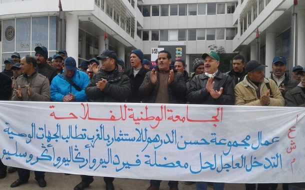 وقفة احتجاجية أمام وكالة التنمية الفلاحية بالرباط