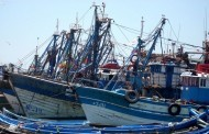 بـيان النقابة الوطنية للصيد البحري